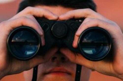 Article : Importance de la curiosité pour un community manager