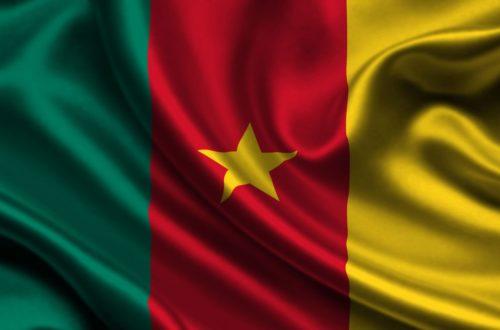 Article : #MondoCorrespondance : les affaire de langues c'est délicat au Cameroun !