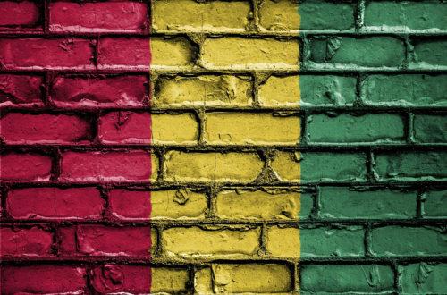 Article : Chers gendarmes guinéens, au nom de la démocratie et de l'Etat de droit, respectez et protégez les journalistes !