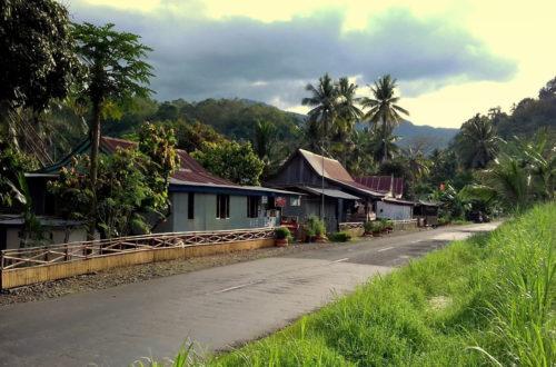 Article : L'Indonésie au son du Gamelan