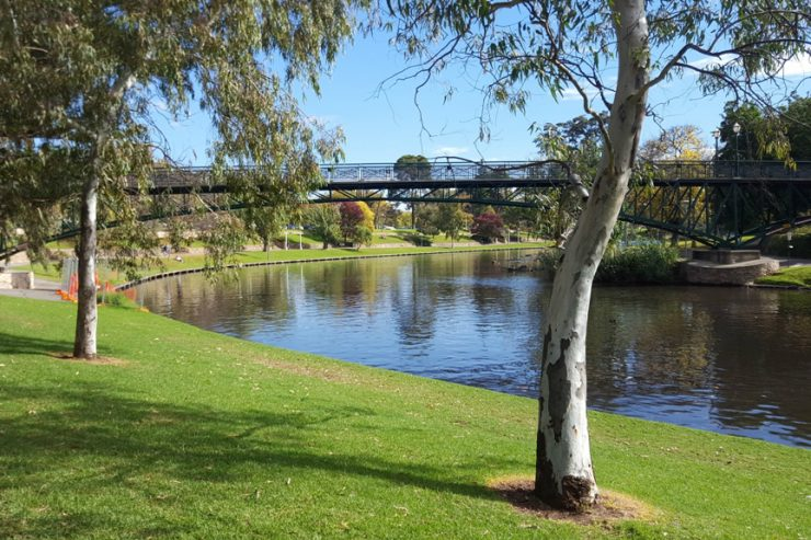 jardin-botanique-adelaide-australie