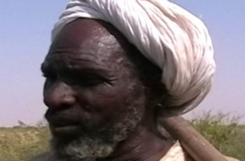 Article : En Mauritanie, MBareck Ould Imijine, de la servitude à la… servitude