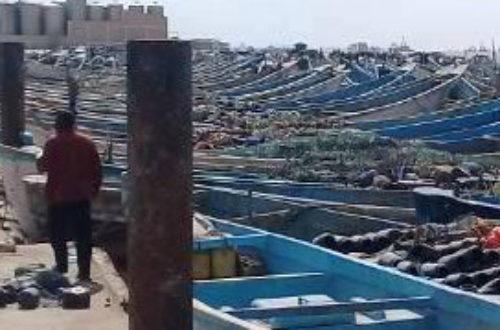 Article : Sleiman, de berger à Sangrava à pêcheur à Nouadhibou en Mauritanie