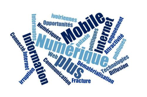 Article : La fracture numérique, un handicap à l'innovation en Côte d'Ivoire