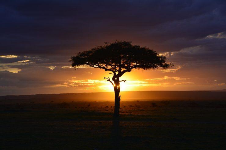 Afrique - pixabay