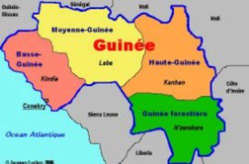 Article : Ma Guinée Plurielle, qui est guinéen ?  (chapitre 4)