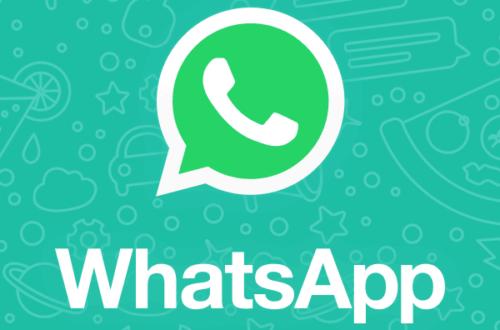 Article : 3 raisons au succès de WhatsApp dans les villages du Niger