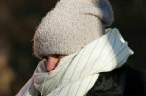 Article : L'hiver alexandrin est bien arrivé ou «winter has come»
