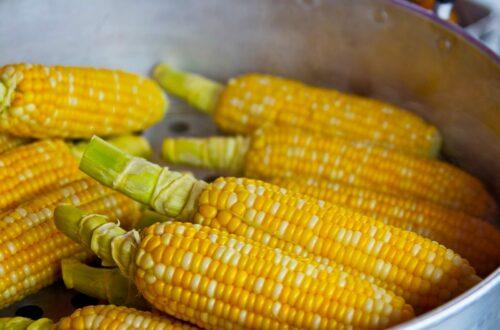 Article : Les vendeurs à la sauvette de maïs à Paris, une activité illégale mais répandue