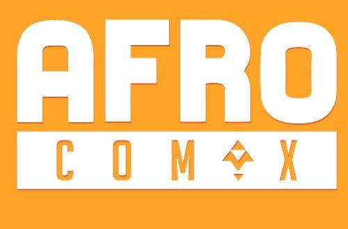 Article : A la découverte d'Afrocomix, application mobile avec des BD et animations made in Africa