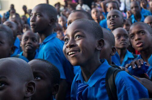 Article : Euthanasie de l'école Sénégalaise, tous coupables
