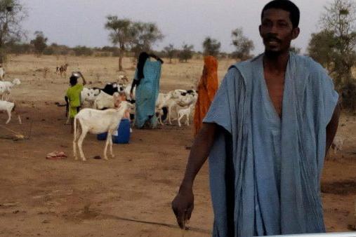 transhumants-Tagant-mauritanie-Selibaby-berger-troupeau