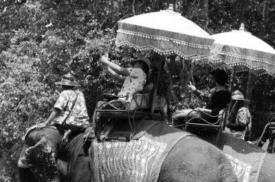 selfie-elephant-touriste-tourisme-asie