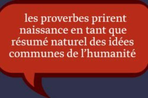 Article : Top 5 des proverbes malgaches pour les jeunes