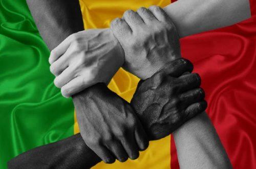 Article : Mali : la guerre des politiques n'aura pas lieu