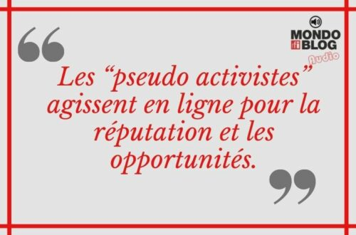 Article : Le Mali a plus de constructivistes que d'activistes