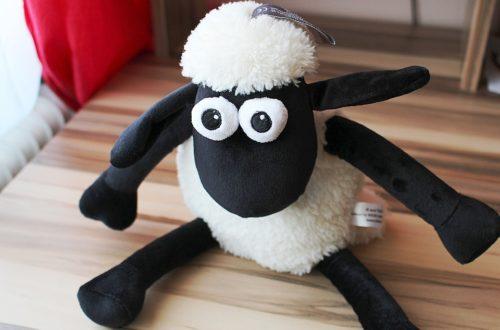 Article : Un mouton récidiviste s'évade