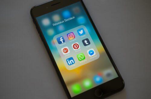 Article : Les pépites de Mondoblog : réseaux, sociaux?