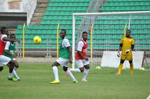 Article : Bénin : c'est le nom de la bête qui fait l'équipe nationale de football