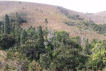 sohisika-madagascar-foret-colline-nature-environnement