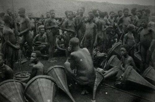 Article : Peuple camerounais, il vous manque l'Histoire !
