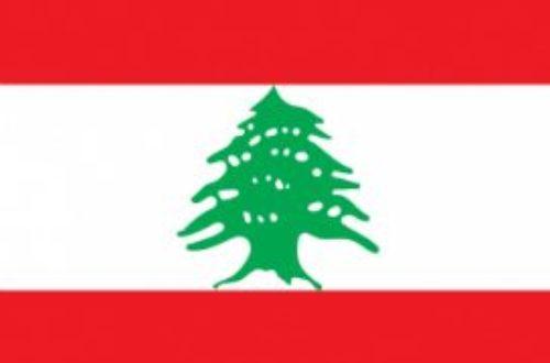 Article : MACAM, Musée d'Art Moderne et Contemporain libanais, tient haut sa place sur une colline de Méditerranée