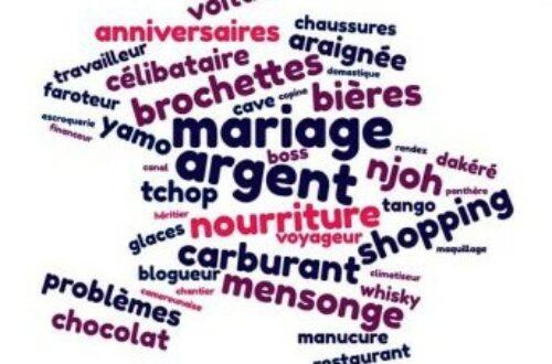 Article : Le dictionnaire «Camerounaise» des mots-clés