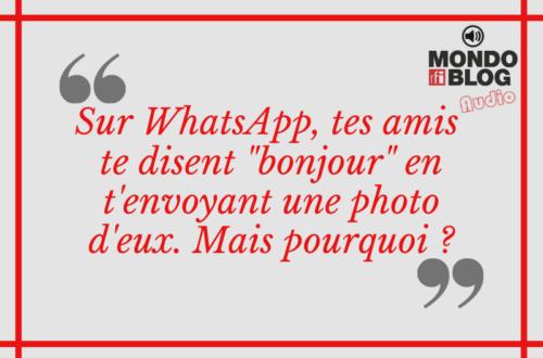 Article : Top 10 des inconvénients de Whatsapp