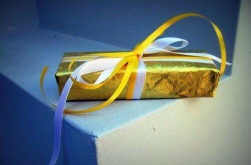 Article : Voici pourquoi il ne faut plus faire de cadeau au pays