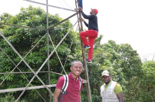 Article : Sur les pistes des soldats de l'environnement : Gorilla FM une nouvelle arme pour protéger la nature