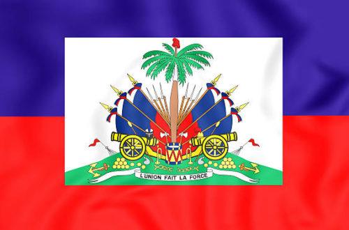 Article : Pour que la Terre se souvienne d'Haïti