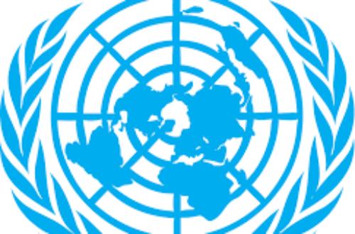 Article : L'ONU intensifie son soutien aux États Membres pour répondre à la pandémie de COVID-19 en Afrique de l'Ouest et du Centre