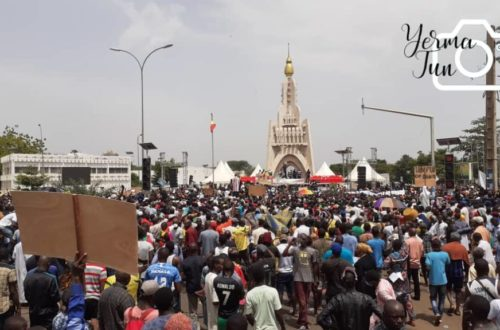 Article : Mali : en marge de la manifestation