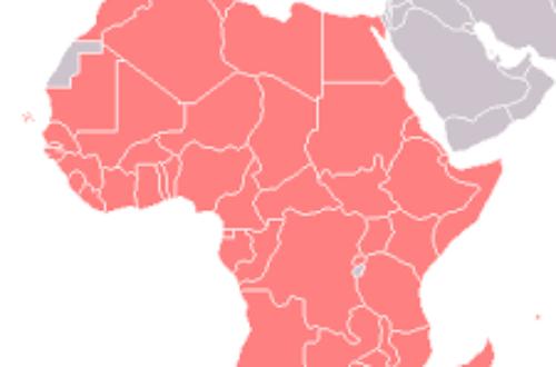 Article : Covid-19 : attention à une gestion de crise «France-au revoir» en Afrique