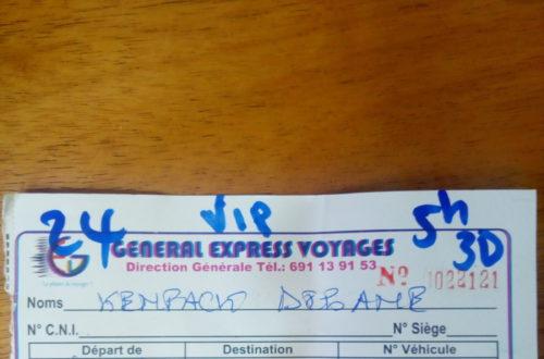 Article : Chronique : mon voyage à Yaoundé avant la manifestation du 22 septembre