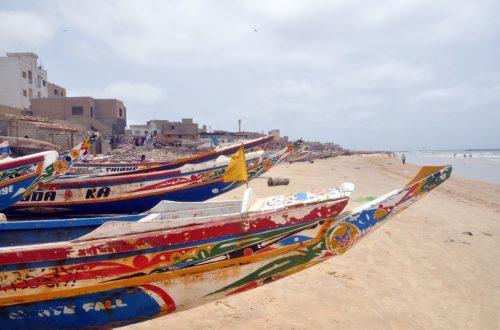 Article : Sénégal: vivre avec ou sans le Coronavirus ?