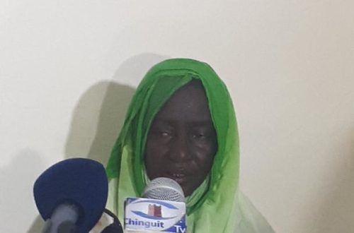 Article : Mauritanie : l'apatridie, le nouveau combat du député Birame Dah Abeid