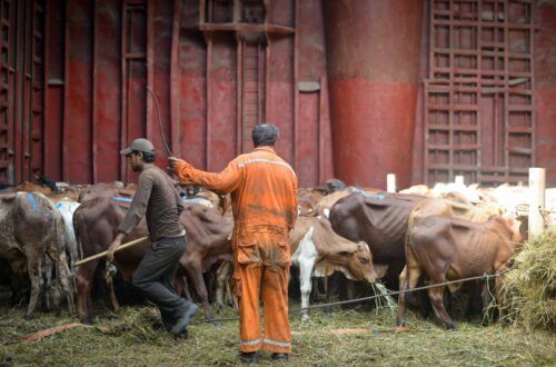 Article : Lutte contre l'esclavage en Mauritanie,