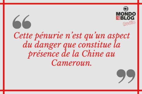 Article : Qui crée la pénurie de pièces de monnaie au Cameroun ?