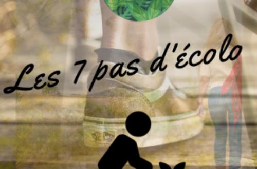 Article : Les 7 pas de l'apprenti écolo