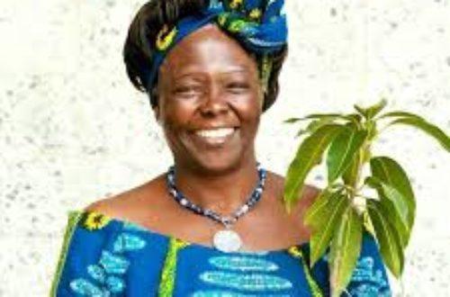 Article : Journée mondiale de l'environnement: In memoriam Wangari Maathai