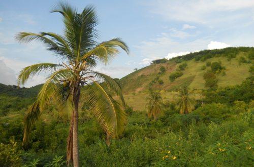 Article : Haïti chevauche un massif