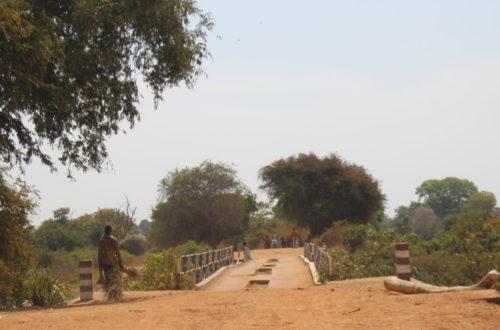 Article : Carnet de voyage (1/2) : sur le périlleux trajet N'Djamena - Moïssala