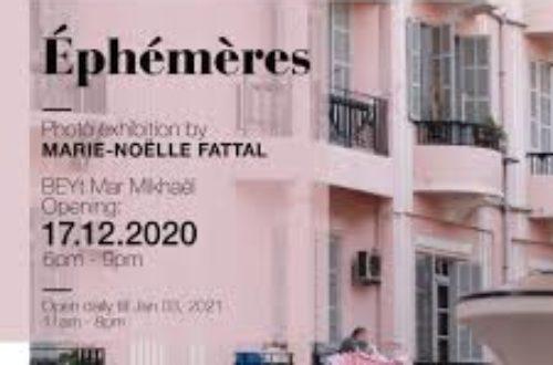 Article : Spirale : Ephémères, de Marie-Noëlle Fattal