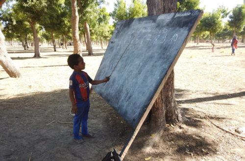 Article : N'Djaména : une école atypique au rythme de vie des nomades