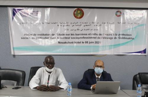 Article : Obstacles à l'accès à la protection sociale en Mauritanie, les acteurs du travail débattent sur une étude