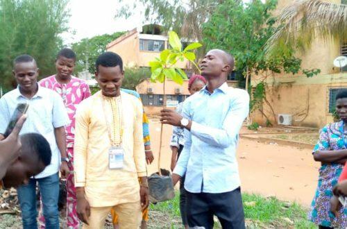 Article : 1er juin, Journée de l'arbre : Radio Univers sacrifie à la tradition
