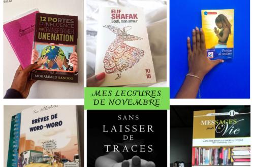 Article : Nouveau récap : les livres de Novembre