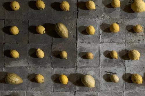 Article : Archéologie, art, avenir et dolce vita en Calabre