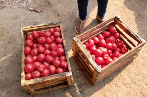 Article : Lubumbashi : Kenya, de zone rouge en commune marchande